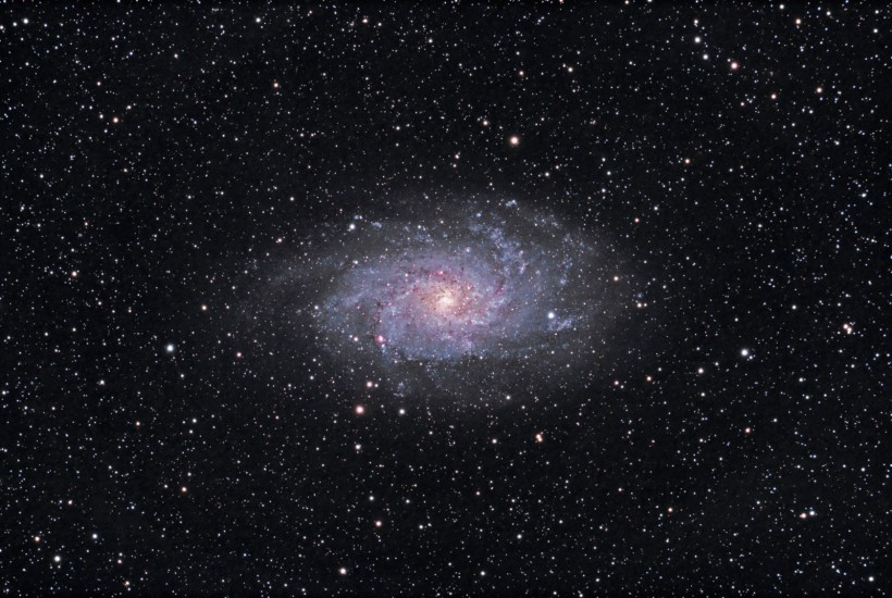 photo of the Triangulum Galaxy