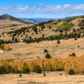 photo of fall colors in Cripple Creek, Colorado